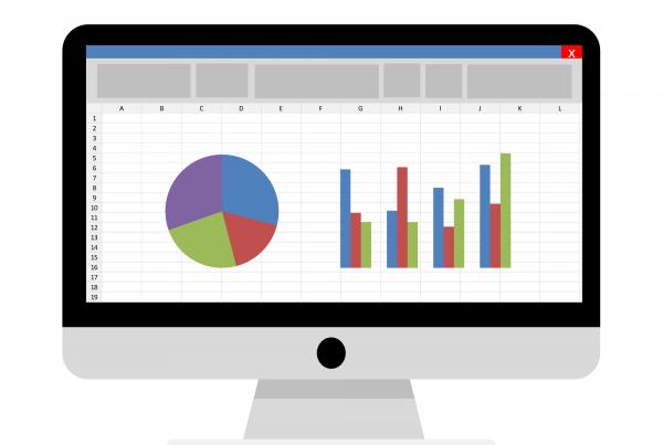 Microsoft Excel Consultant